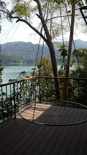 Tree Water Railing Lake Outdoors No People Day Nature Shadow Scenics Timber Deck Timber Flooring Growth Sky Beauty In Nature Lost In The Landscape Swing Bed Royal Belum Royal Belum State Park GrikPerak Lake View Lazy Bed