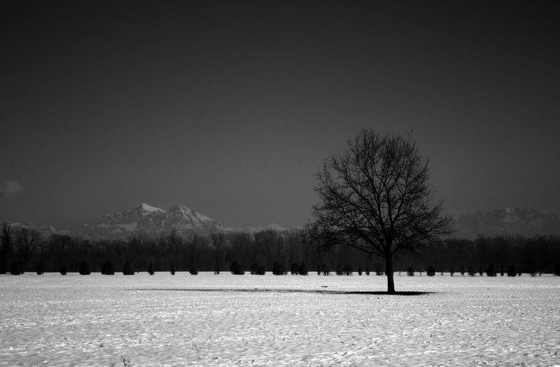 SOLITUDE - Italy EyeEm EyeEm Best Shots EyeEm Nature Lover EyeEm Gallery Field Nature Tranquility Tree Winter Beauty In Nature Blackandwhite Cold Temperature Day Italy Landscape Mountain No People Outdoors Photo Photography Scenics Sky Snow Tranquil Scene