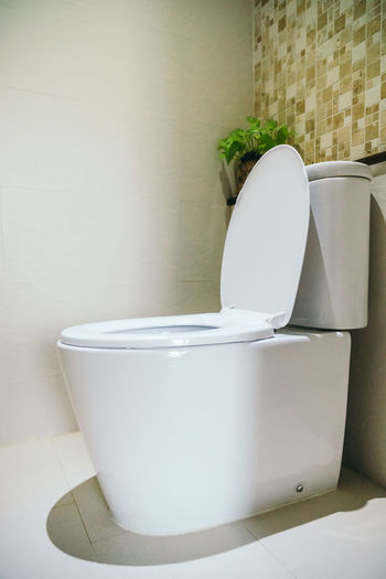 Absence Bathroom Close-up Container Domestic Bathroom Domestic Room Flooring Home Home Interior Hygiene Indoors  Luxury Nature No People Seat Still Life Toilet Toilet Bowl Wall Wall - Building Feature White Color