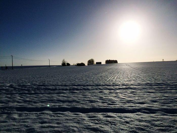 Wintersun February Snow ❄ Wintersun Sunset Silhouettes First Eyeem Photo Showcase: February