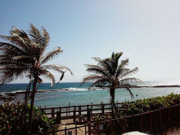 My View...Good Morning Puerto Rico