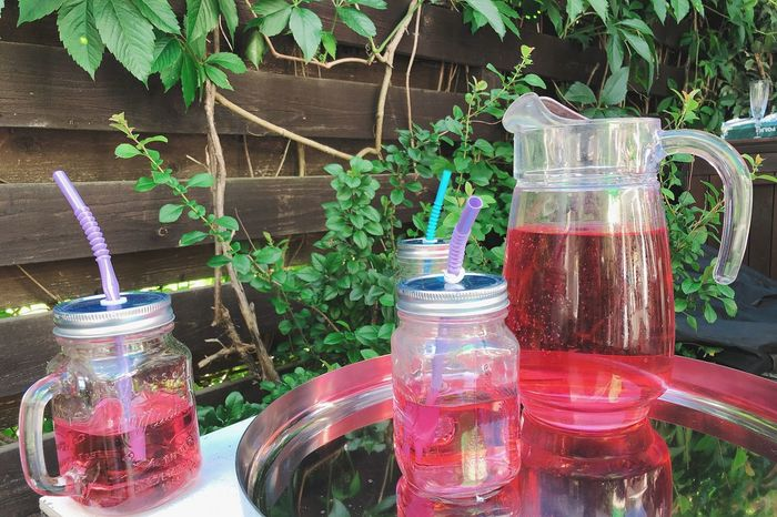 Refreshment Food And Drink Drink Plant Nature Glass No People