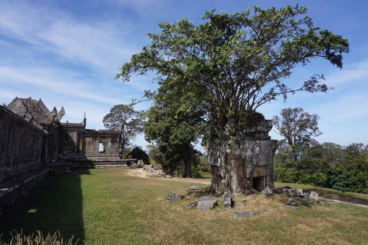 Tree Architecture Grass History Built Structure Sky Old Ruin Day Building Exterior Field Ancient No People Place Of Worship Outdoors Nature Beauty In Nature Ancient Civilization