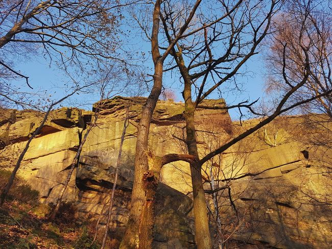 Low Angle View Day Outdoors Sky No People Built Structure Architecture Tree Nature Building Exterior Close-up Quarry Climbing Hell Hole Heptonstall Hell Hole Rocks Backgrounds Autumn Bare Tree Landscape Scenics Beauty In Nature Nature