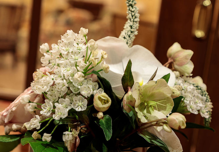 Bouquet of white flowers including roses, orchids, and hydrangea flowers. Lily Beauty In Nature Bouquet Bouquet Of Flowers Close-up Day Flower Flower Head Fragility Freshness Hydrangeas Indoors  Leaf Nature No People Plant White Flower