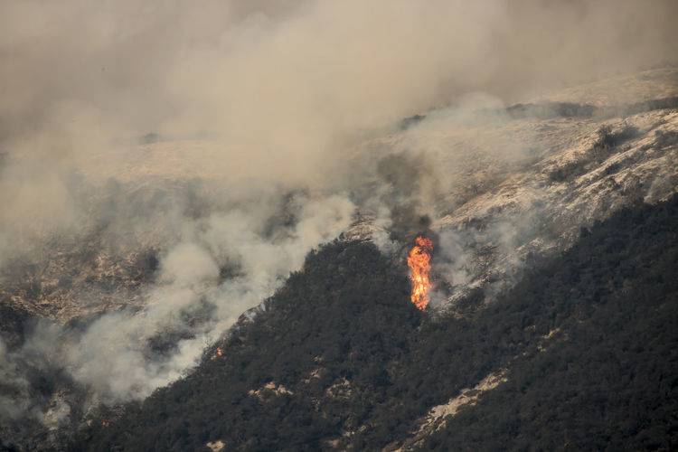 Single flame towers among burning brush on mountainside above the city of Carpinteria California during Thomas Fire. Burning Carpinteria, CA Flame Flames Thomas Fire Towering Danger Dangerous Heat - Temperature Mountains Nature Outdoors Physical Geography Power In Nature Smoke - Physical Structure Threat