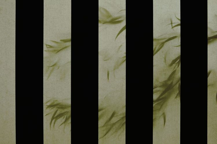 Full Frame Pattern Curtain Textured  Striped Day Facade Building Fabric Canvas Leaf Tree like a feather