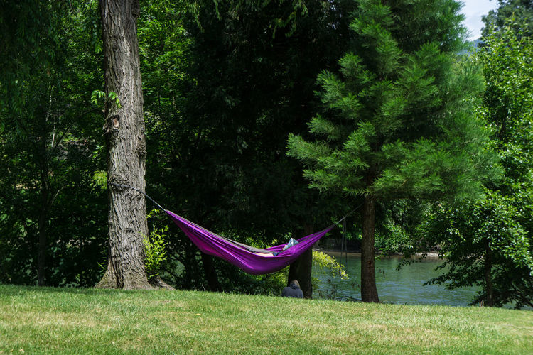Person Relaxing In Hammock Hanging Amidst Trees At Riverbank