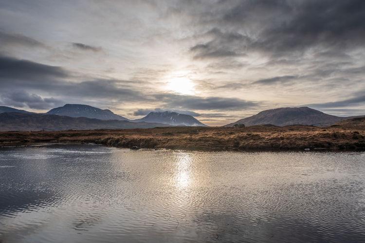 Wetlands and