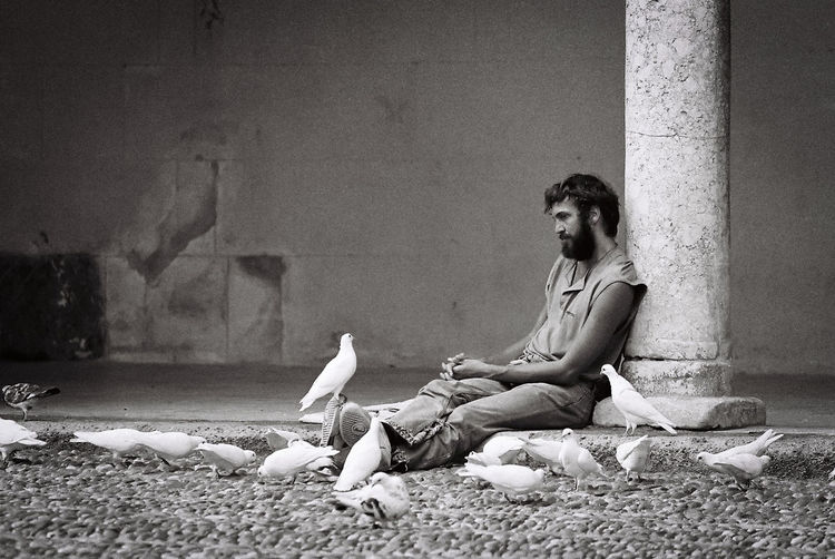 I took this picture of a man on the courtyard of the mosque in Córdoba, Spain. Architecture Building Exterior Dove Human Animal Interaction Meditation One Person Relax Streetphotography The Street Photographer - 2017 EyeEm Awards Tranquil Scene Tranquility