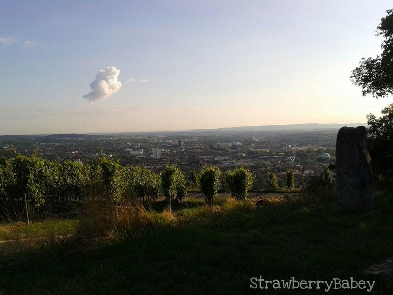 Wartberg Heilbronn Enjoying The View Cloud