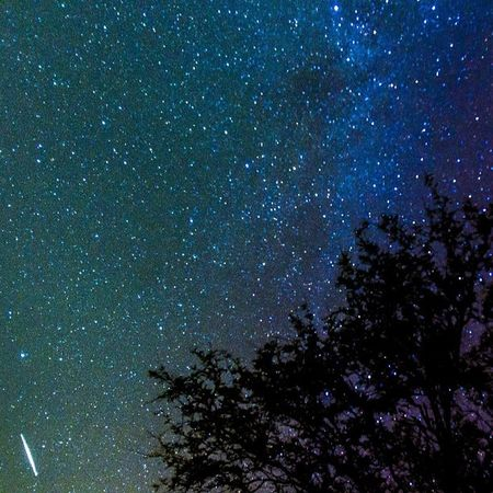 Hello, wherever you are... Perseid Meteor Shower Shootingstar Nightsky Astrophotography Meteorshower Stars Catalina Stargazing Starporn