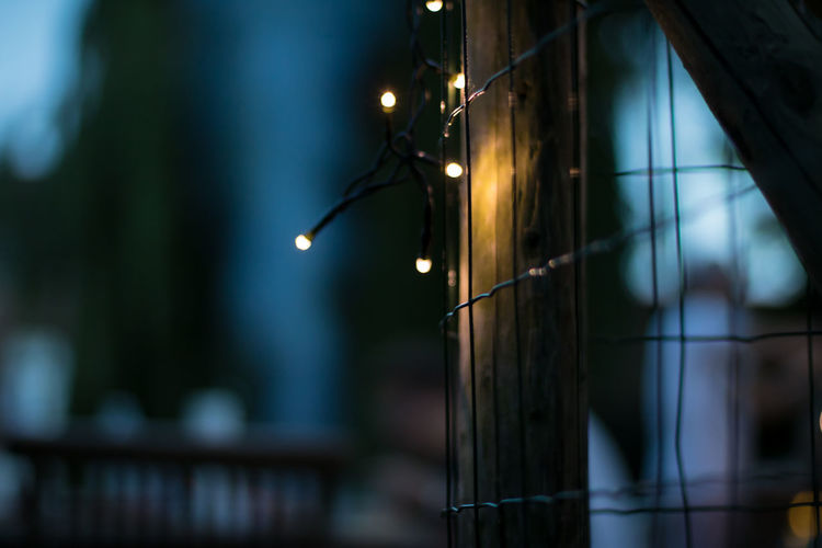 Christmas Lights Cosy Fence Focus On Foreground Garden Illuminated Night No People Summer Night Darkness And Light Outdoors Outdoor Photography