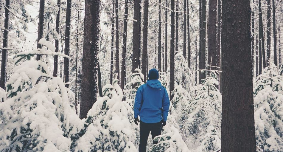 Snow Beauty In Nature Hiking Idyllic Outdoors Fog Winter Panasonic Lx100 Lx100