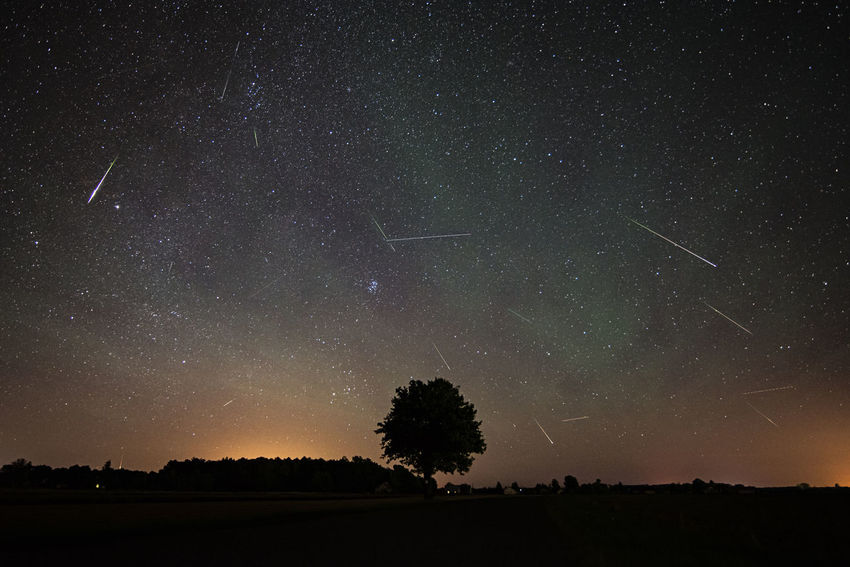 Astronomy Beautiful Nature Beauty In Nature Dark Landscape Meteor Milky Way Nature Night Perseids Sky Star Tree