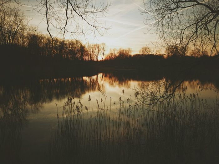 VSCO Poland Nature EyeEm Best Shots EyeEm Best Edits Landscape