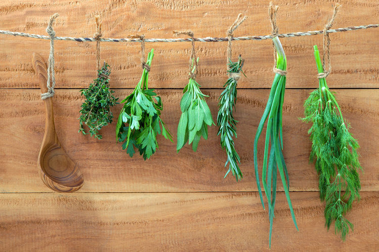 Close-up of various herbs hanging on rope