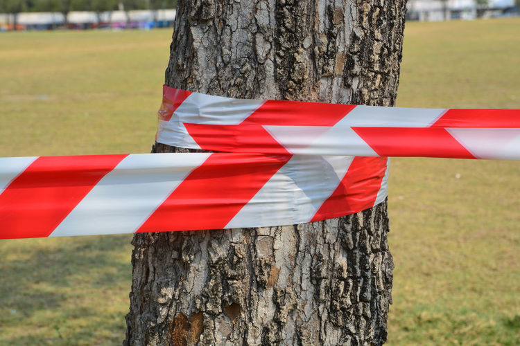 Close-up of red umbrella on wooden post in field