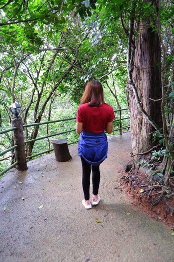 Full length rear view of woman walking in forest