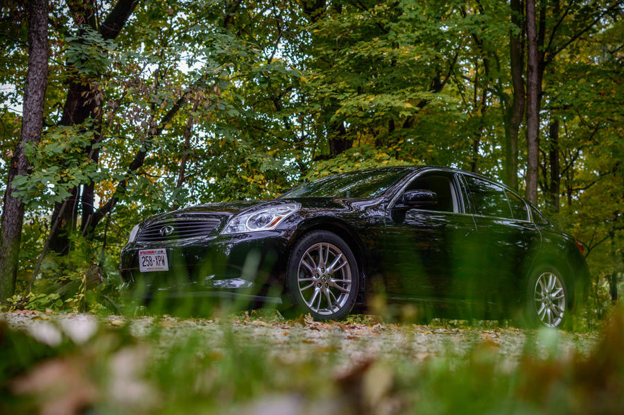 Car Check This Out Eye4photography  G35 Getting Inspired Infiniti Land Vehicle Mode Of Transport Nikon Nikonphotography Outdoors Selective Focus Surface Level Transportation Tree Wisconsin
