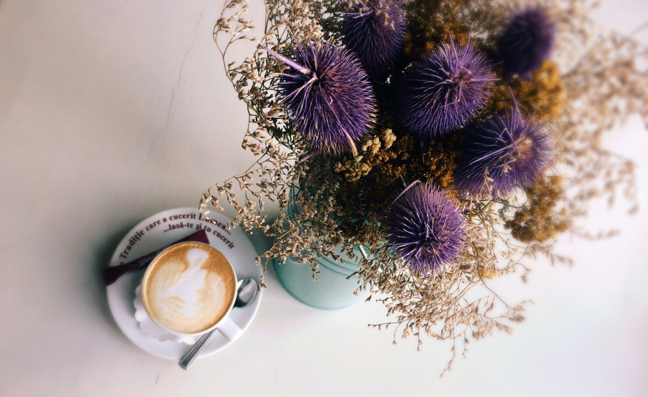 table, drink, food and drink, freshness, coffee cup, flower, refreshment, coffee - drink, high angle view, potted plant, directly above, no people, indoors, healthy eating, cappuccino, close-up, frothy drink, latte, food, nature, day