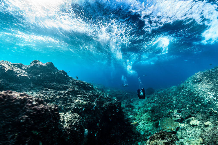 beautiful Indonesia Sea Underwater Water UnderSea Aquatic Sport Adventure Swimming Sport Exploration Rock Scuba Diving Nature One Person Leisure Activity Unrecognizable Person Rock - Object Solid Real People Sea Life Outdoors Marine Underwater Diving Excitement