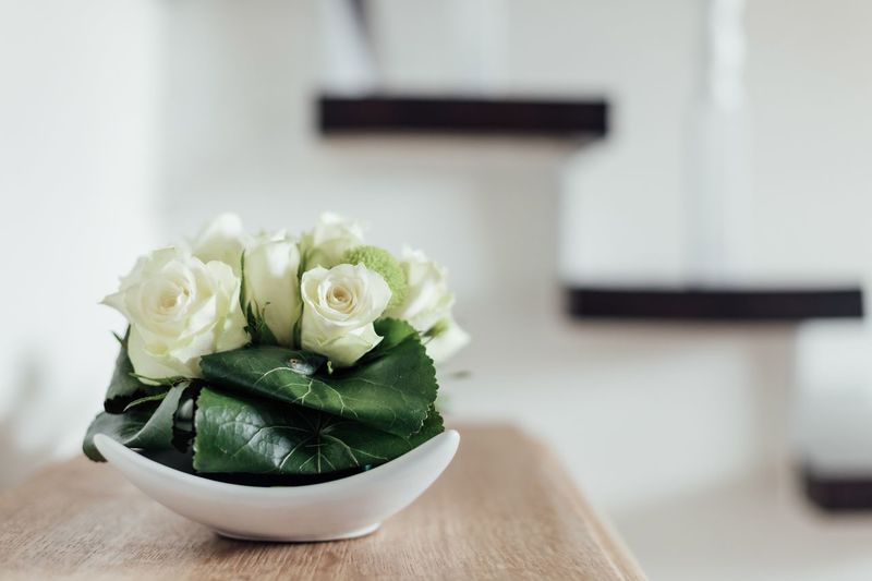 Close-up of white rose on table at home
