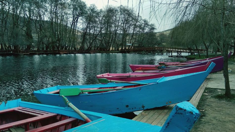 Water Mode Of Transport Moored No People Day Nature Beauty In Nature Outdoors Sky Tree Colour Your Horizn