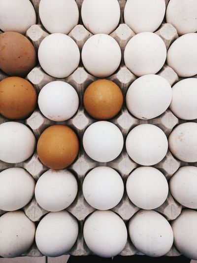 Egg Food Healthy Eating Close-up No People Indoors  Egg Carton Day Food And Drink White Beatuiful Beautifully Organized