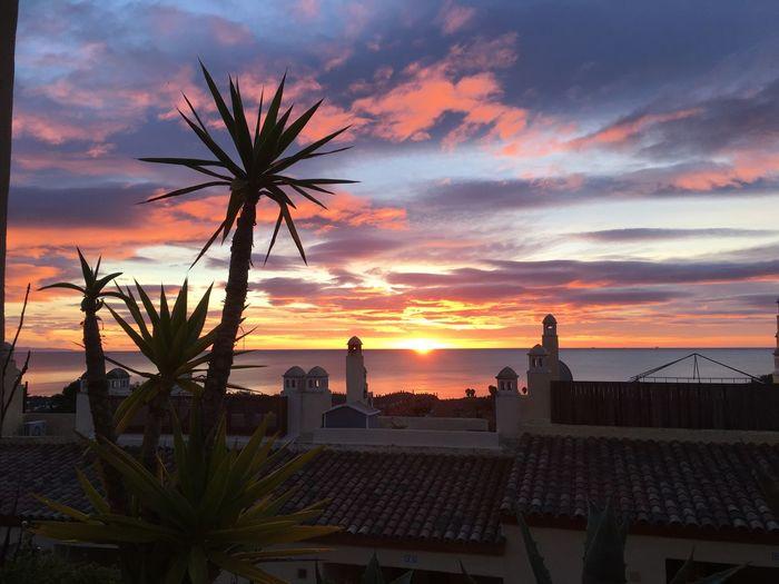 Sunrise in