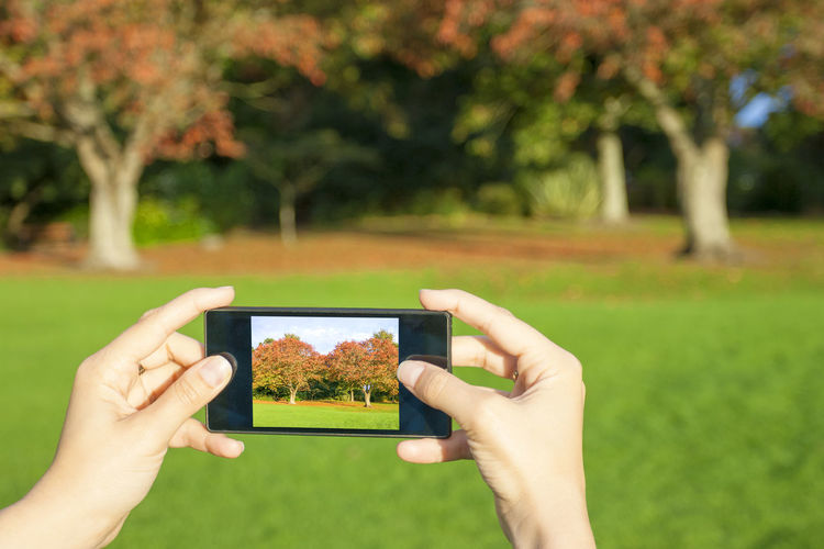 Young adult woman taking a picture in a autumn landscape Human Hand Plant Hand Grass Human Body Part Tree One Person Photography Themes Activity Focus On Foreground Nature Technology Portable Information Device Holding Day Wireless Technology Land Smart Phone Unrecognizable Person Photographing Outdoors Finger
