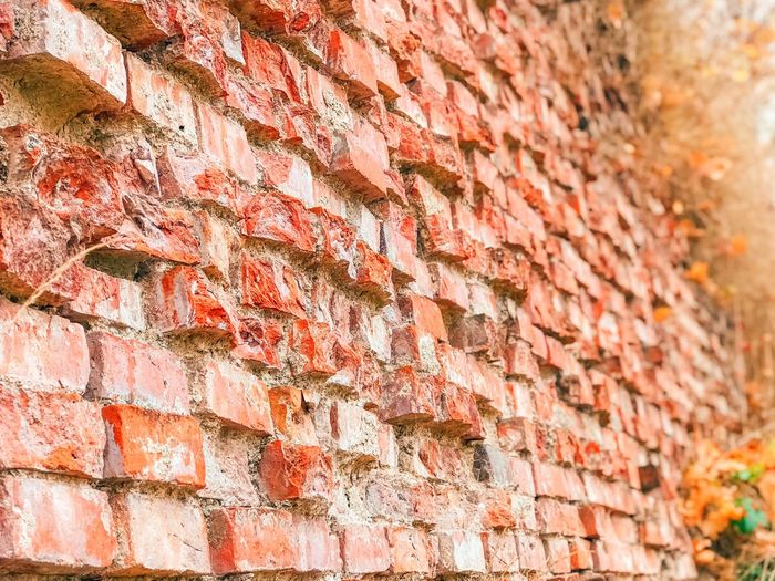Brick Wall Backgrounds Full Frame Brick Wall Pattern Wall - Building Feature Close-up Sunlight Red Day Outdoors Textured  Building Exterior Nature Repetition Built Structure No People Selective Focus Architecture
