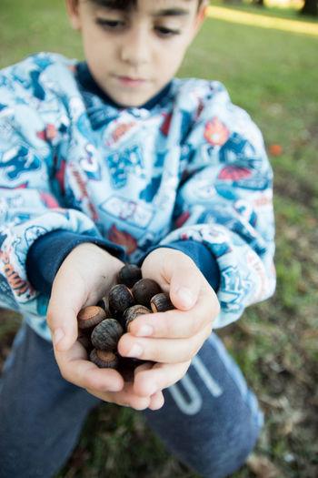 Boy holding chestnuts