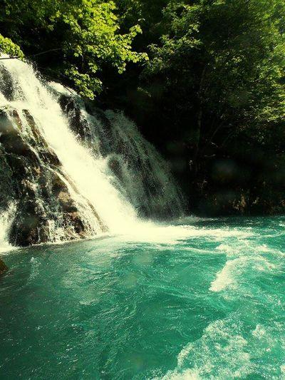 Tara River Welnes Relaxing