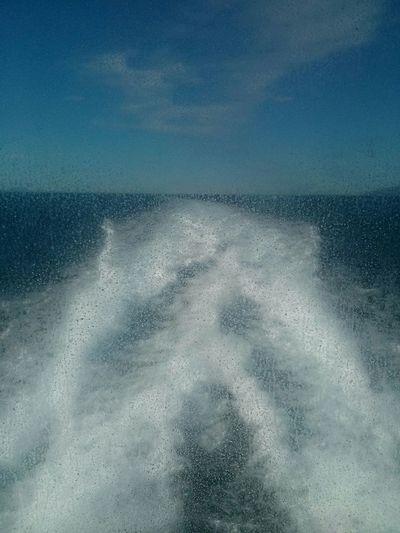 Motorboat Waterski Monoski Watersports Summer Speedboat Boat Sea Adriatic Sea Water Seaside Croatia Swimming Nature Tourism