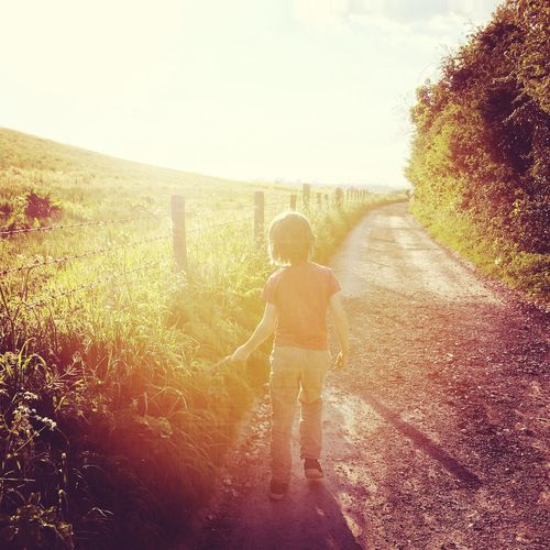 Silhouette Of Boy Standing On Path