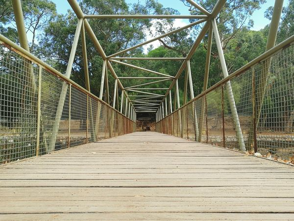 The Way Forward Built Structure Connection Tree Architecture Narrow Bridge - Man Made Structure Long Diminishing Perspective Sky Outdoors Surface Level Growth Day Green Color Wood Paneling No People Boardwalk Lush Foliage Bridge HuaweiP9 Oo Huawei Shots Setubal Portugal