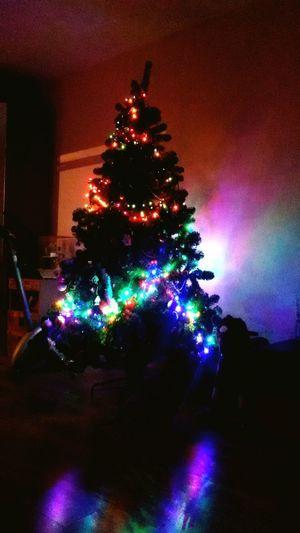 Надоела подготовка к экзаменам, все у меня Новый год))) First Eyeem Photo