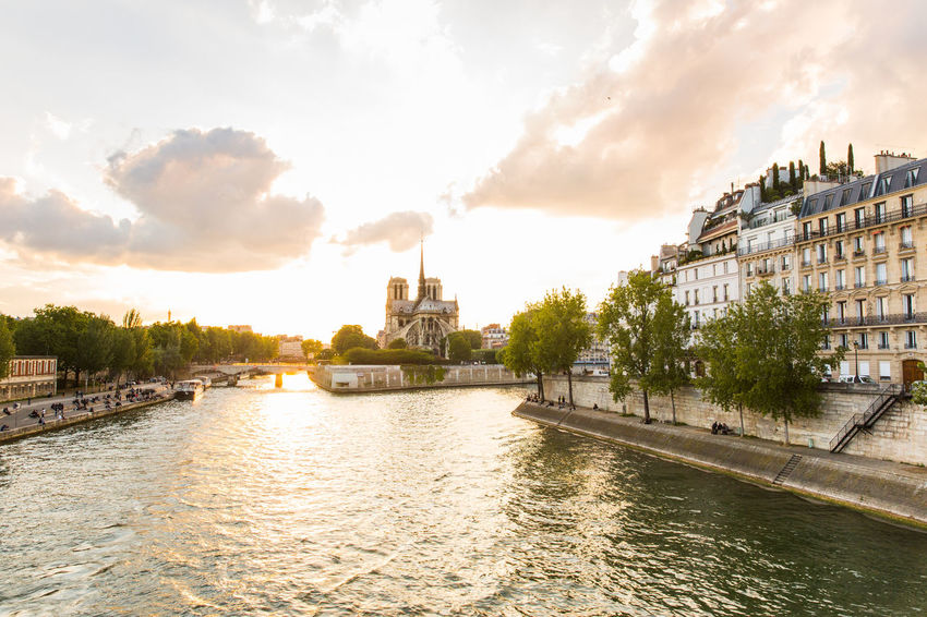 The back of Notre Dame cathedral in Paris, France at sunset. City Cityscape Europe France ILE DE LA CITE Landmarks Notre Dame Notre Dame De Paris Outdoors Paris Paris Je T Aime Paris, France  River Seine Sky Sunset Travel Travel Destinations Travel Photography Waterfront
