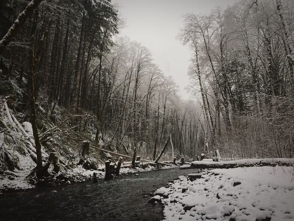 It was a snowy sunday for me Taking Photos Creekside Water Snow Rustic Subtlelight