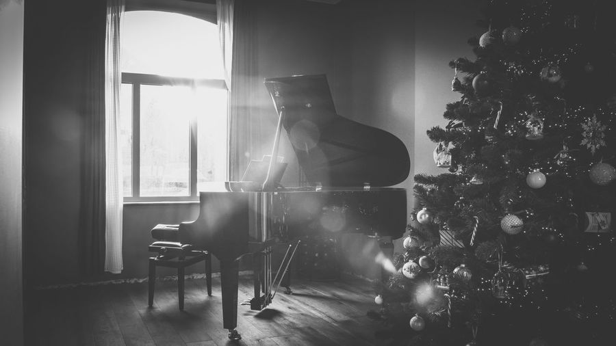 Window Music Indoors  Arts Culture And Entertainment Musical Instrument Piano Home Interior Classical Music Day Blackandwhite Photography Lensflare Christmas Tree Living Room Indoors  NikonD800 Sunflare Theholidays Music Brings Us Together Music Traveling Home For The Holidays Piano Moments