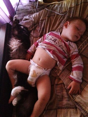 Все спят!😆😉😉😉🐈🍼😇😌