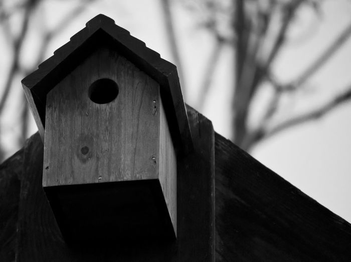 The Places I've Been Today National Nest Box Week Blackandwhite
