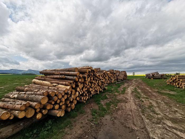 Stack Agriculture Timber Sky Landscape Cloud - Sky Deforestation Bale  Woodpile Hay Bale Farmland Environmental Damage
