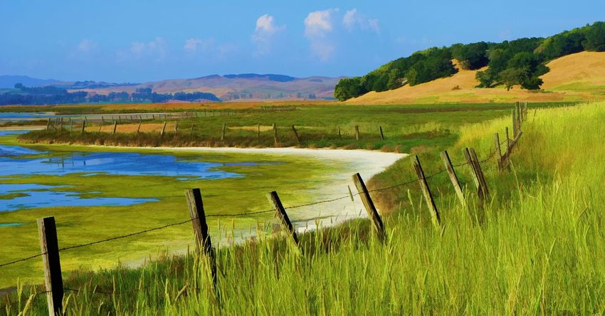 Rush Creek Lagoon Animal Themes Beauty In Nature Day Field Grass Green Color Lake Landscape Mountain Nature No People Non-urban Scene Outdoors Rural Scene Scenics Sky Tranquil Scene Tranquility Tree Water Wooden Post