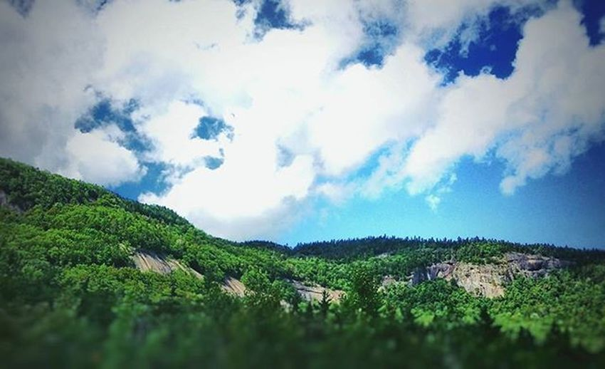 One of those times where you font really need a caption. --- Kangamangus Highway, NH Snapseed VSCO Vscocam Kang Kamgamangus Kangamangushighway Newhampshire NH Newengland Nature Trees Mountians Clouds Bluesky Sky Forest Whitemountains Travel Roadtrip Vacation