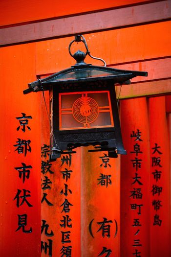 Lamp and Torii Japan Shinto Shrine Fuhimi Inari Shrine Shrine TORII Lamp Red Hanging Text Close-up Architecture Built Structure Building Exterior Kyoto City