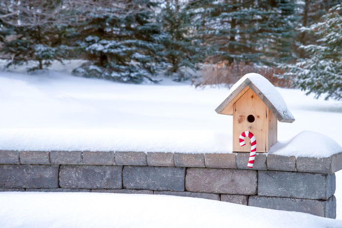 Birdhouse decorated for christmas, sitting on snow covered bench Bird House Christmas Cold Weather Ice Snow Flake Trees Birdhouse Candy Cane Christmas Decoration Cold Natures Beauty No People Snow Snow Covered Snow Covered Landscape Snow Fall Snowy Stone Bench