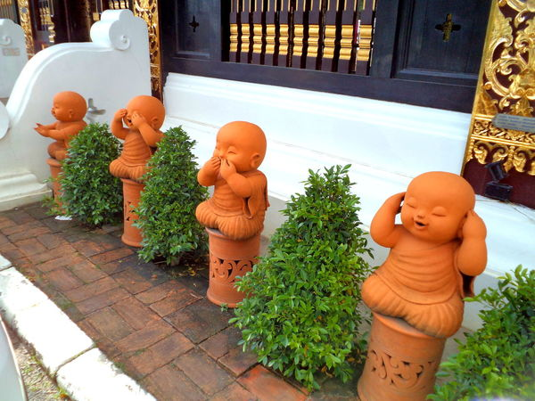 Wat garden in Chiang Mai #architecture #blindmutedeaf #buddhism #buddhisttemple #chiangmai #Thailand Decoration Flower Pot Front Or Back Yard Garden Green Green Color Growing Growth High Angle View Ivy Leaf Plant Pot Plant Potted Plant Wall