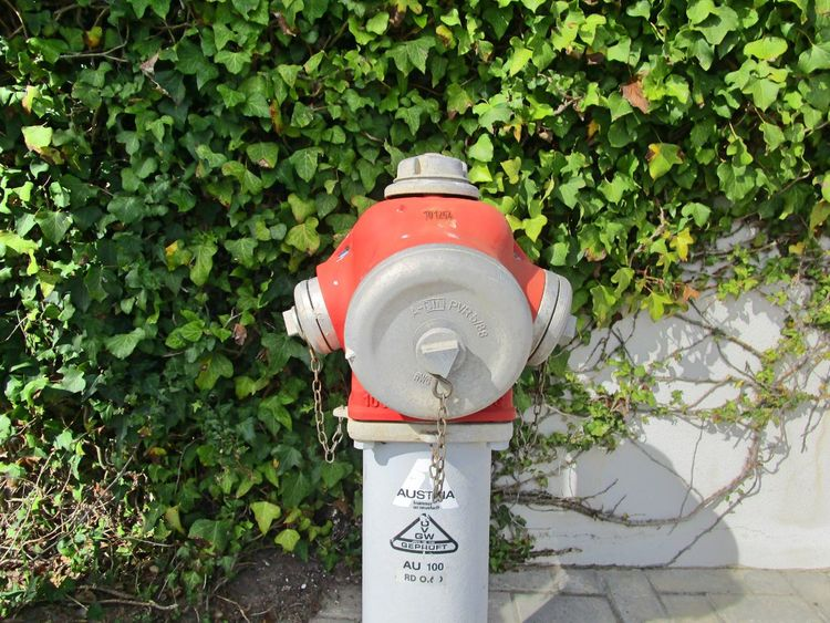EyeEm Best Edits EyeEm Best Shots Hidrant Metal Plants Portugal Red Showcase March